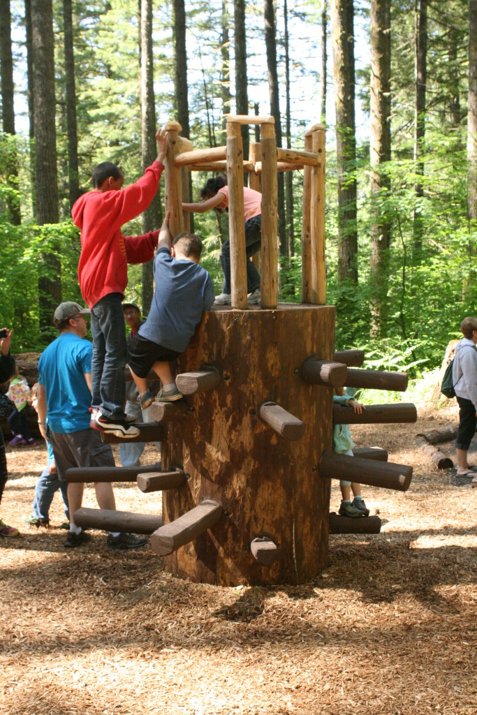 stump climber