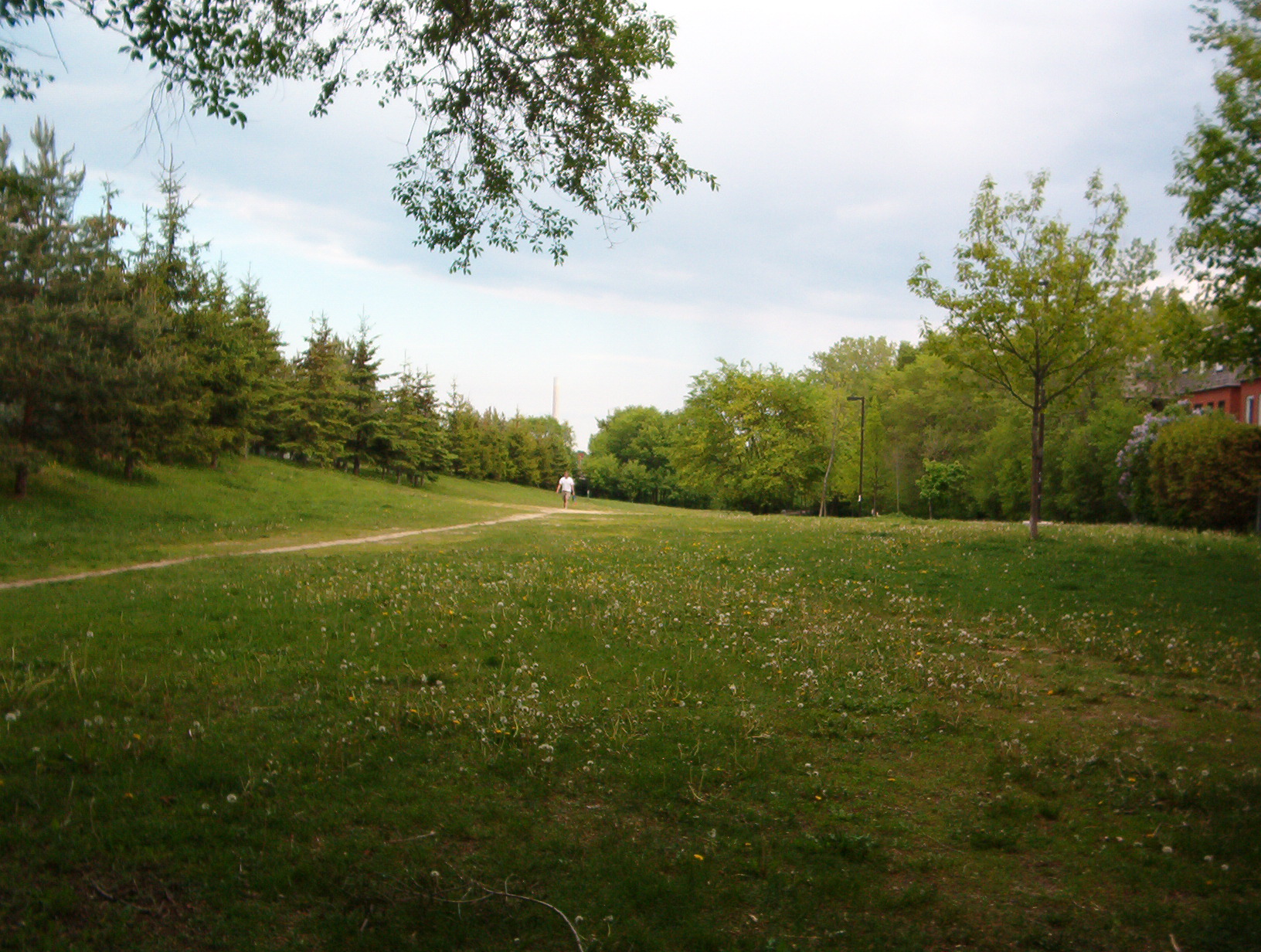 TTC lands May 2005 001
